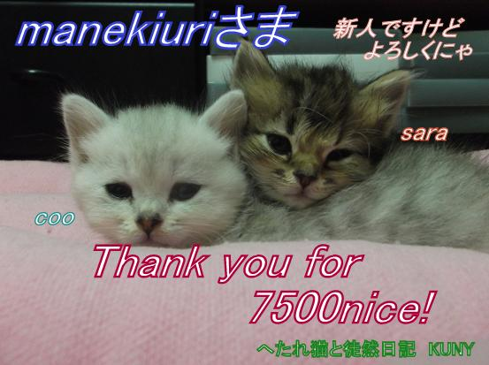 7500nice!カード.jpg